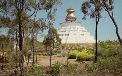 Global Tree Initiative aide à verdir le parc de la paix Great Stupa, Bendigo, Australie