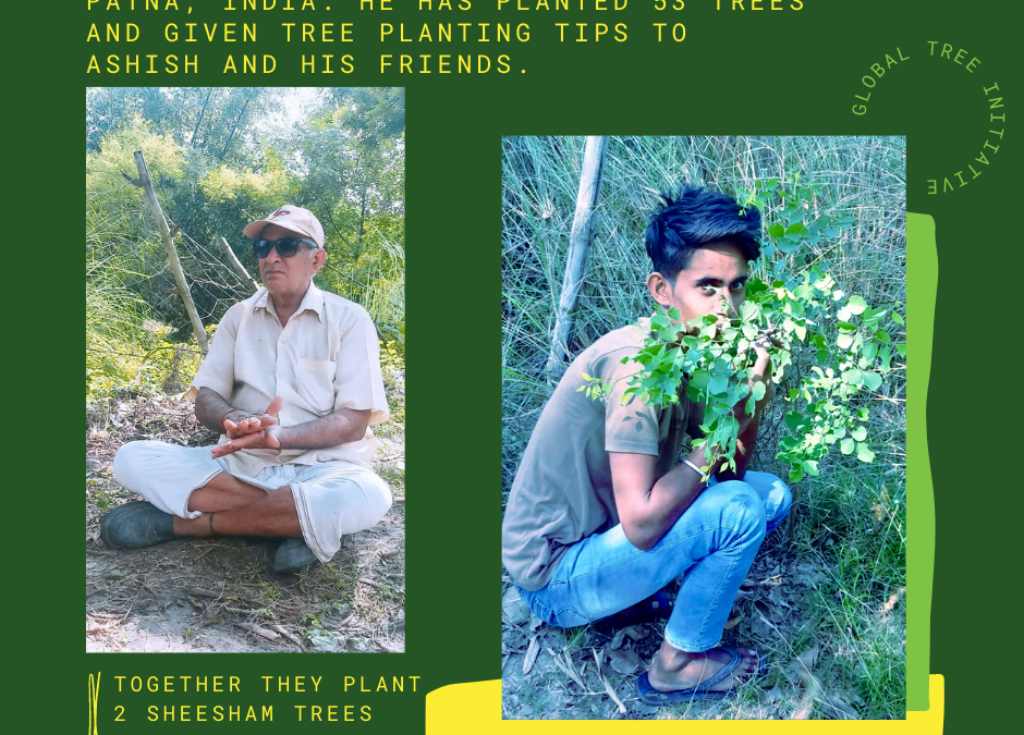 A retired police officer and his passion for planting and growing trees
