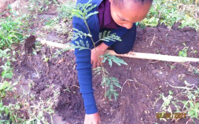 Planting and educating for a better world